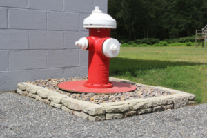Meadow-Edger-Blue-Vari-Fire-Hydrant-800px